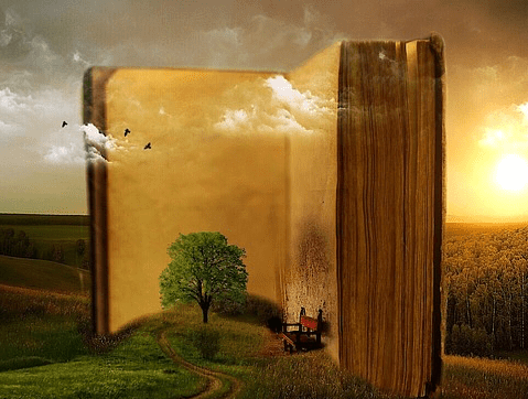 Imagination inside a book