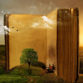 Reading is where imagination is born