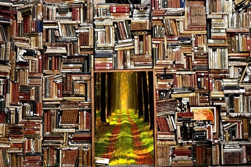 Books are the doorway to everything