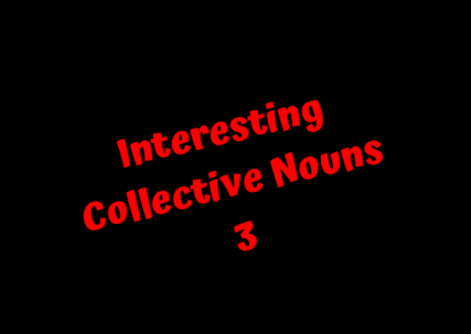 Interesting Collective Nouns 3